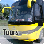 what-to-do-tours