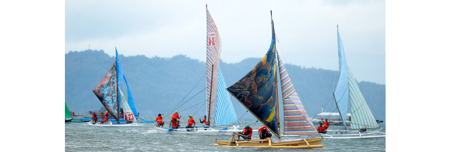 42nd Paraw Regatta - February 16-23, 2014